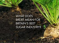 What does Brexit mean for Britain's beet sugar industry?