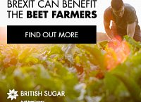 Brexit can benefit the beet farmers