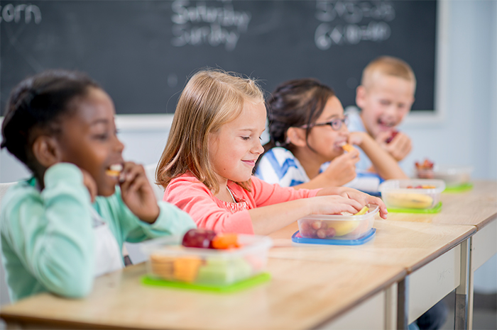Online food teaching course for primary school teachers